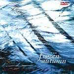 The Frozen Autumn, Seen From Under Ice, Nabla Operator, coldwave, darkwave, gothic, gothic rock, new romantic, new wave, synthpop