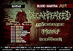 Decapitated, metal, Blood Mantra Tour 2014, Thy Disease, Materia, The Sixpounder