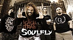 Soulfly, Archangel, groove metal, thrash metal, nu metal, alternative metal