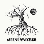 Nemoreus, Silent Watch, black metal, folk metal, metal