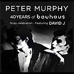 Peter Murphy, David J. 40 years of Bauhaus, Bauhaus, Desert Mountain Tribe, gothic rock