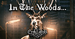 In The Woods, Ereb Altor, Isole, Shores of Null, black metal, doom metal, viking metal, death metal