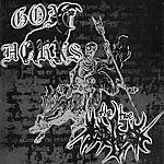 black metal, Goat Horns, The True Endless, Aphelion Records,  Witchhammer Productions