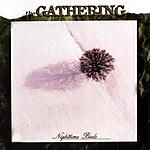 The Gathering, Mandylion, Nighttime Birds, Anneke Van Giersbergen