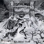 Satyricon, Dark Medieval Times, black metal