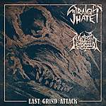 grindcore, Deformeathing Productions, Straight Hate, Nuclear Holocaust, East Grind Attack